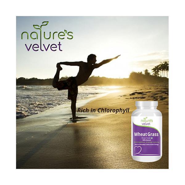 Natures Velvet Wheat Grass Powder 100 gm