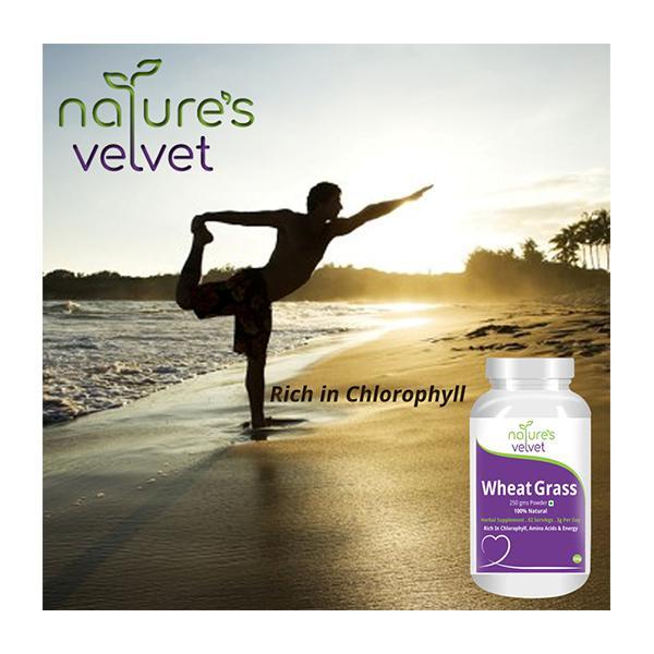 Natures Velvet Wheat Grass Powder 250 gm