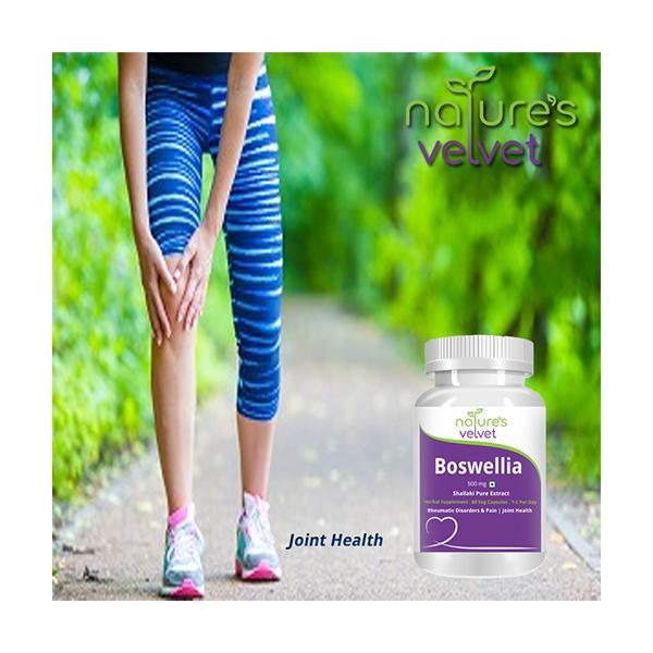 Natures Velvet Boswellia Serrata Pure Extract 500 mg Capsules 60's
