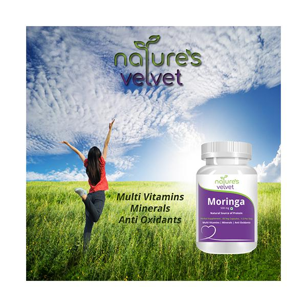 Natures Velvet Moringa Leaf Extract 500 mg Capsules 60's