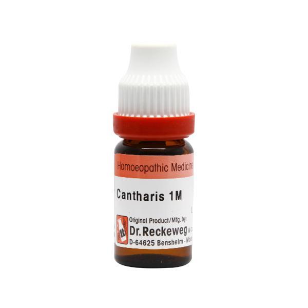 Dr. Reckeweg Cantharis 1M Liquid 11 ml